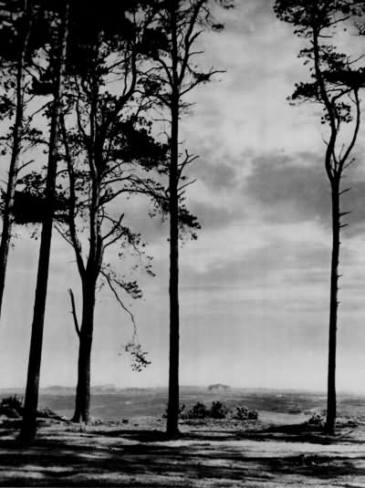 View from Camp Hill - 1930