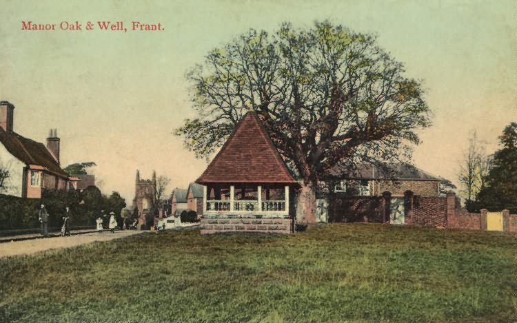 Manor Oak & Well - 1908