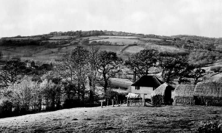 Pooks Hill - 1938