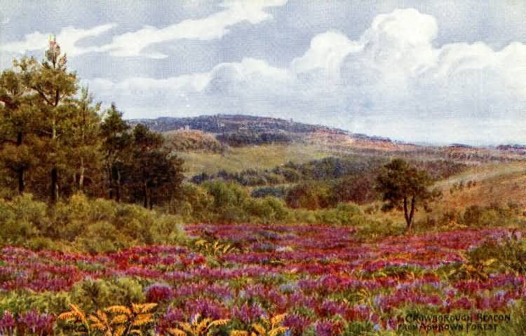 Crowborough Beacon from the Ashdown Forest - c 1910