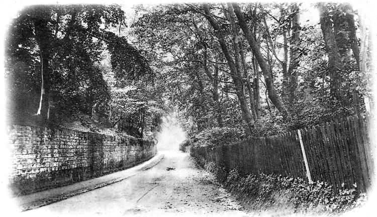 Seal Hollow Lane - 1903