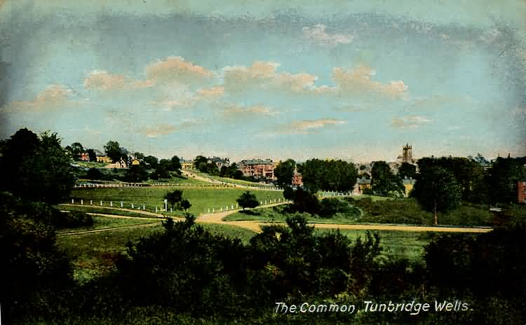The Common - 1905