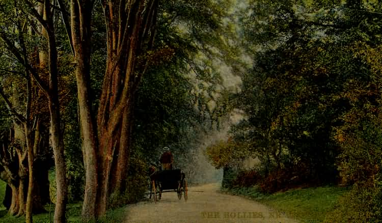 The Hollies, near Buckhurst Park - 1913