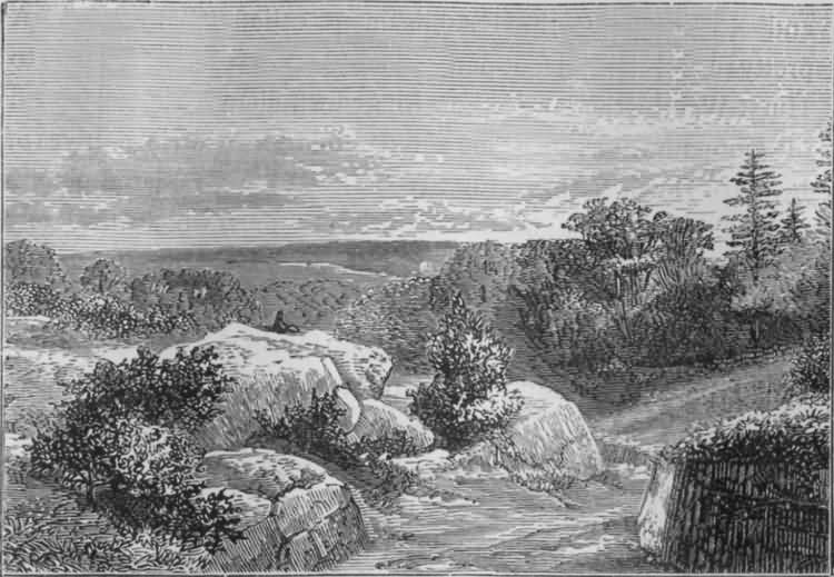 View on Rusthall Common - 1830