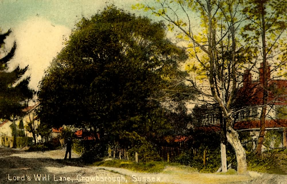 Lords Well Lane - 1910